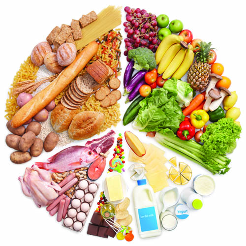 Component of nutrition that needed by our body