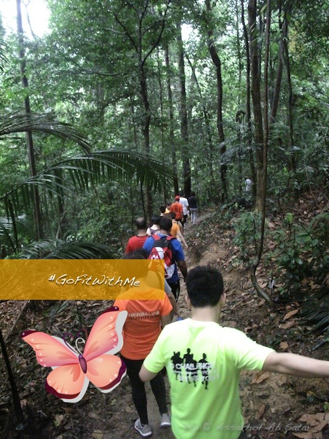 toward the end of the trail - hiking in kota damansara community forest